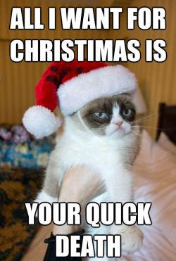 http://www.walagata.com/w/nightwalker/grumpy-cat.jpg